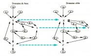 Gineste domaine source domaine cible neurosciences theorie sensorielle